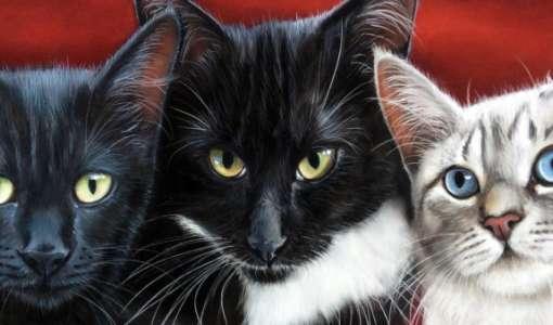 Tiere in Pastell – faszinierend realistisch