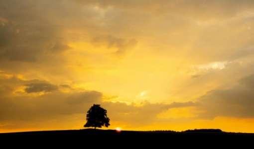 Weites Land, hoher Himmel und das Licht am Teufelsmoor