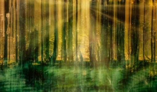 Licht, Zeit und Farbe – Fotografie zwischen Realismus und Abstraktion